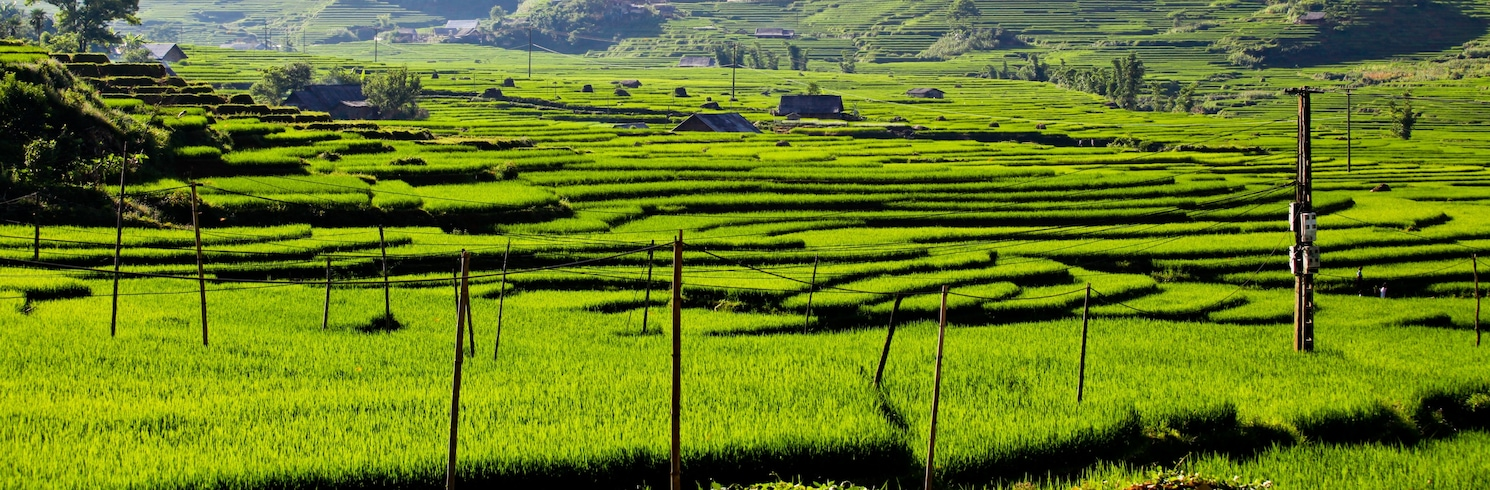 סה פה, וייטנאם