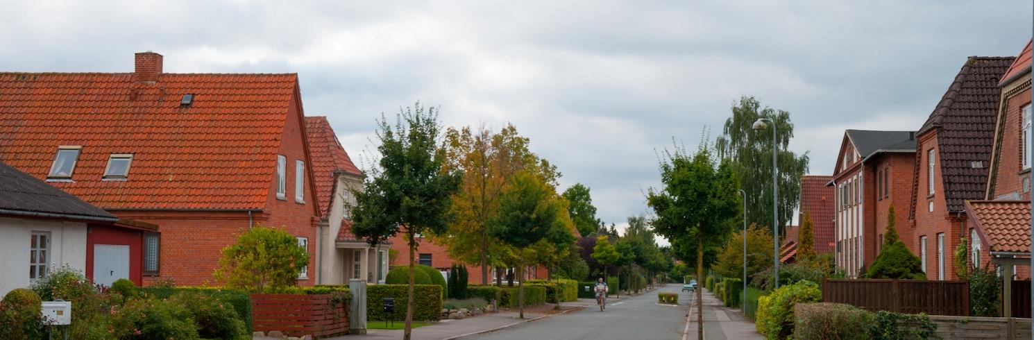 Soro, Tanska