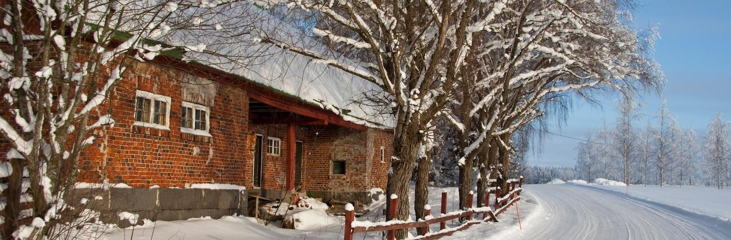 海文卡, 芬蘭