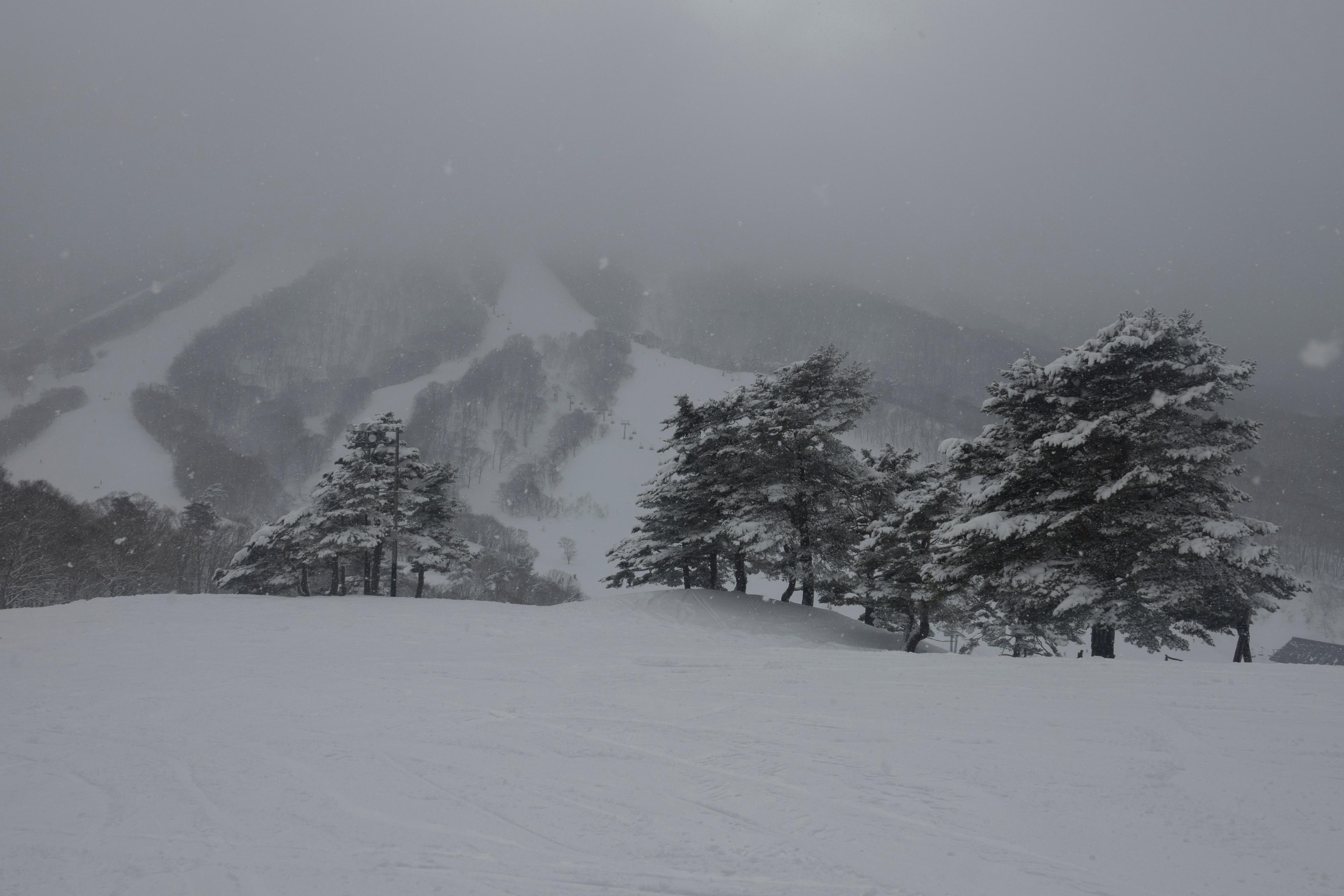 Skigebiet Madarao Kogen, Iiyama, Niigata, Japan