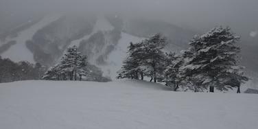 Madarao Mountain Resort, Iiyama, Myoko, Nagano, Niigata, Japan