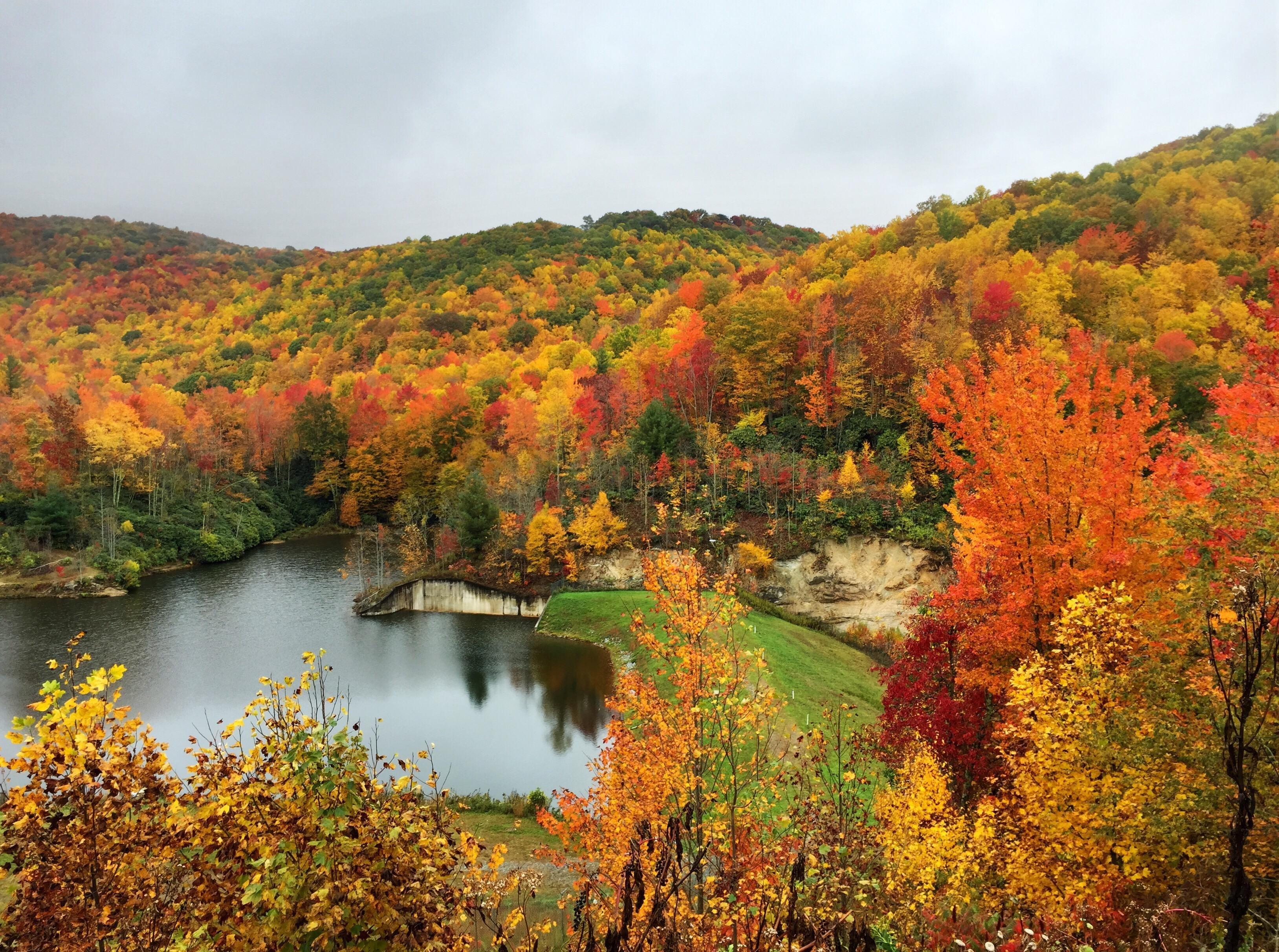 Laurel Creek, North Carolina, United States of America