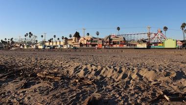 West Coast Surf Shop