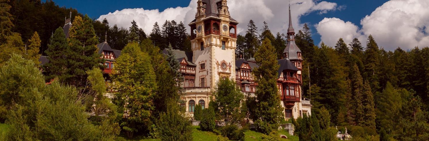 西奈亞, 羅馬尼亞