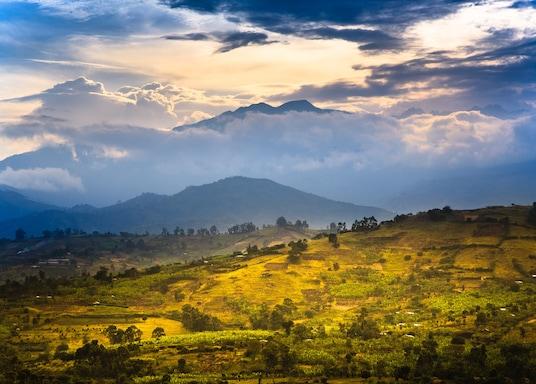 פורט פורטל, אוגנדה