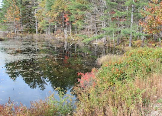Bangor, Maine, United States of America