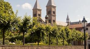 Viborgi székesegyház
