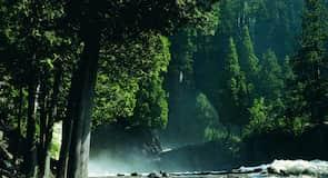 Gooseberry Falls Állami Park