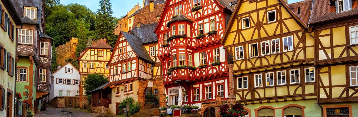 Miltenberg, Saksamaa
