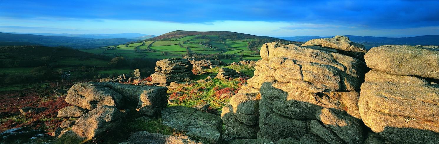 Quận Tây Devon, Vương Quốc Anh
