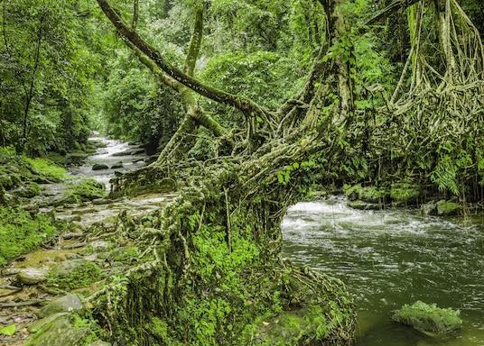 Shillong, Ấn Độ