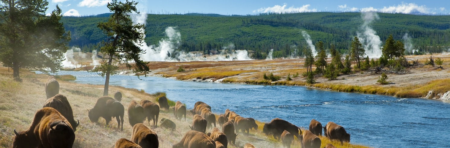 Yellowstone National Park, Wyoming, Spojené štáty