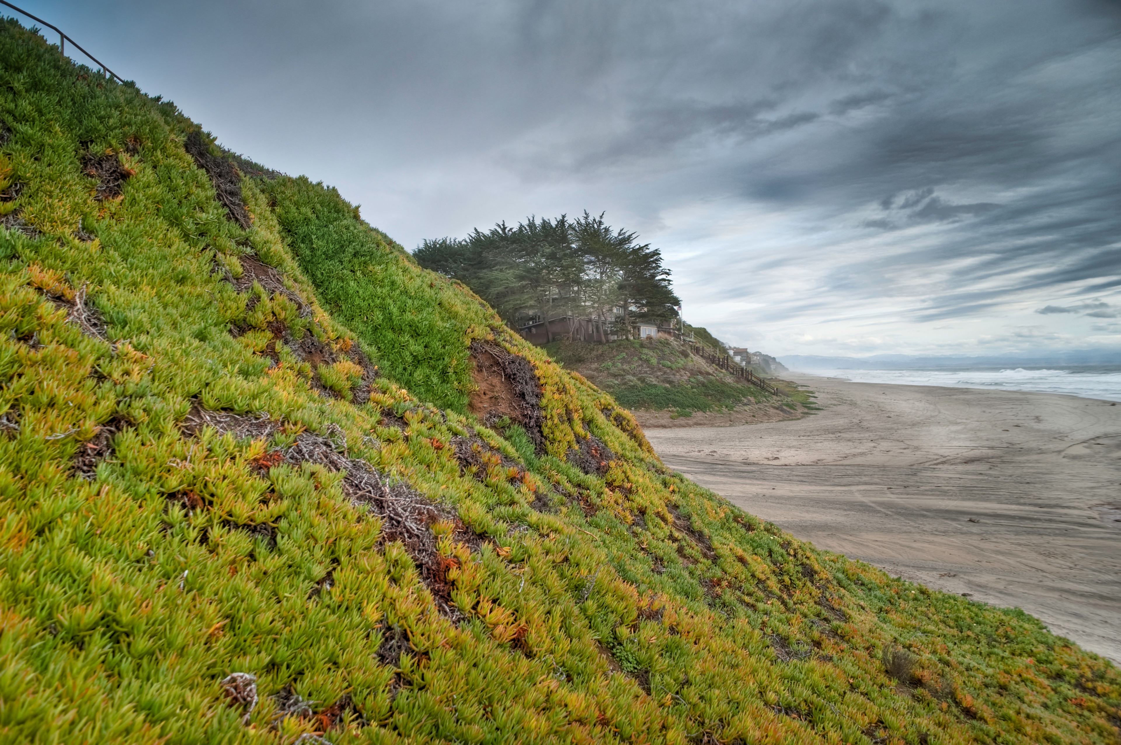 Why not spend a carefree afternoon at La Selva Beach during your travels in Watsonville? Attend a sporting event while you're in the area, or simply enjoy its restaurants.