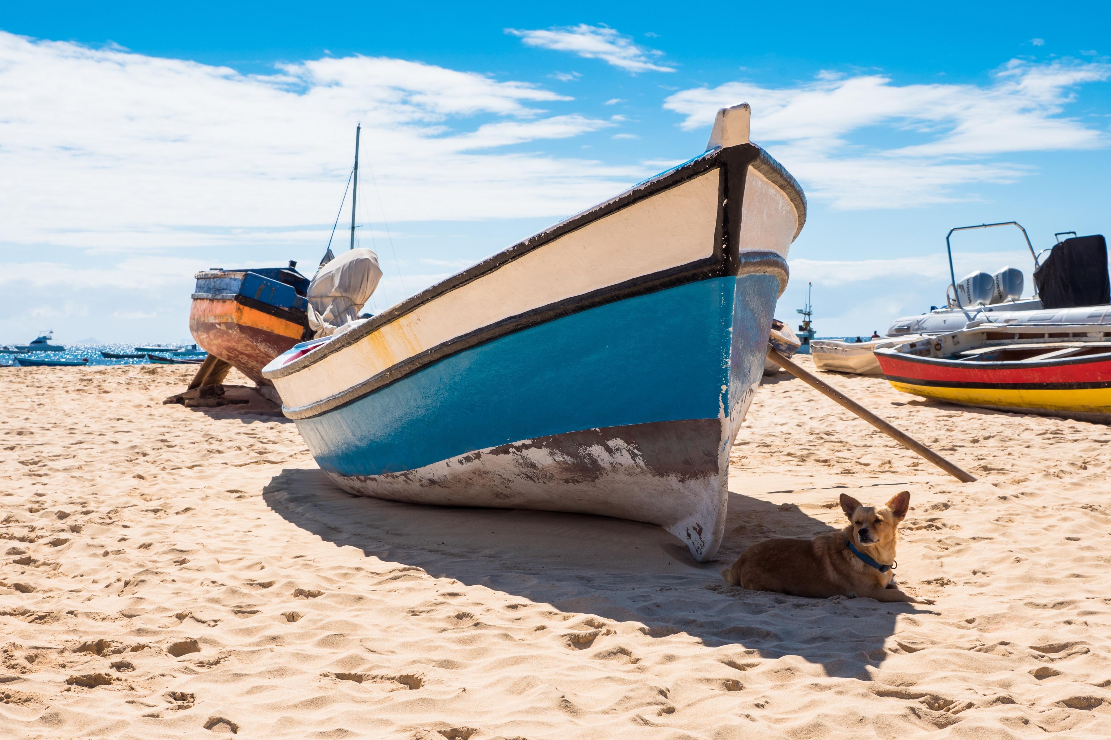 Plaża w Santa Maria, Sal, Zielony Przylądek