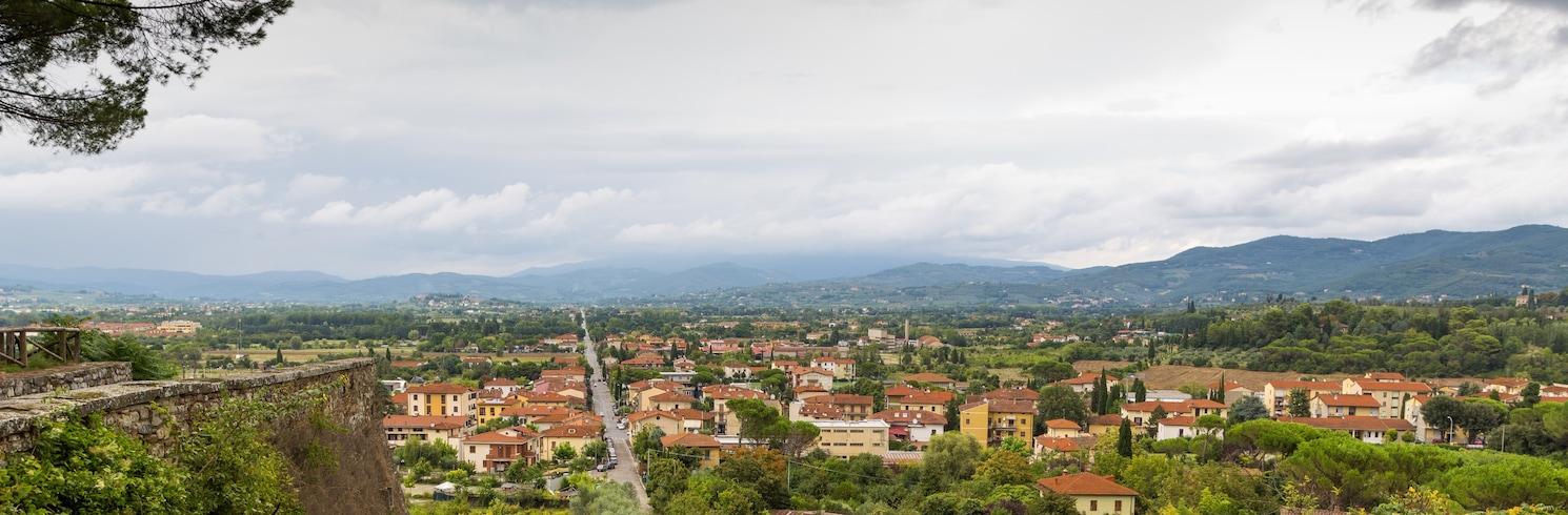 阿雷佐, 義大利
