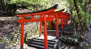 Izushi Tapınağı