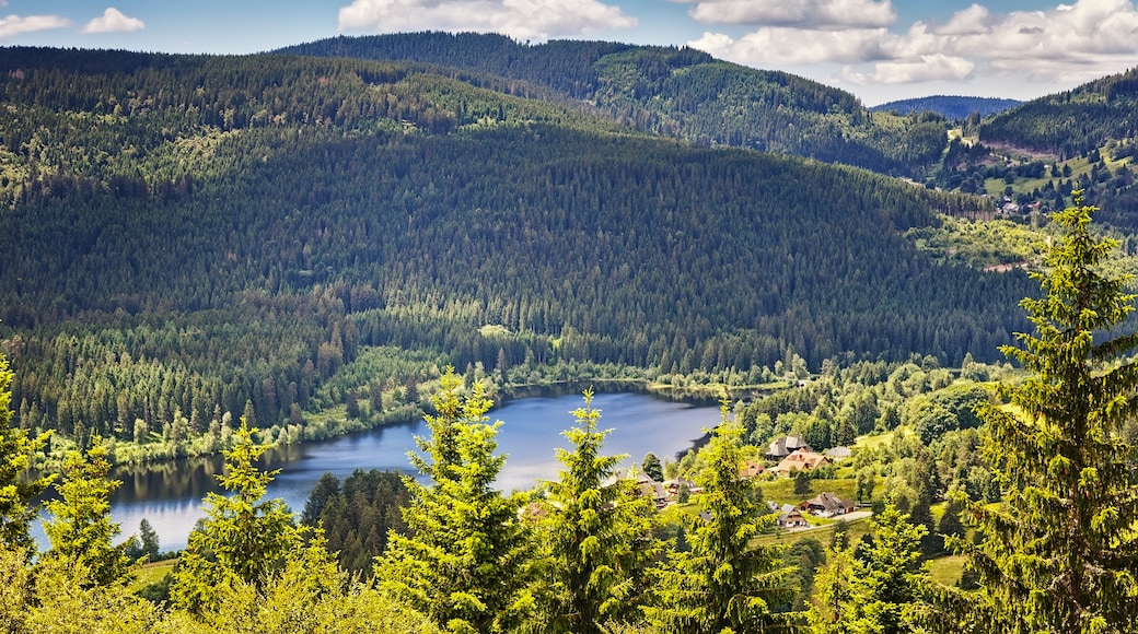 Lake Schluchsee