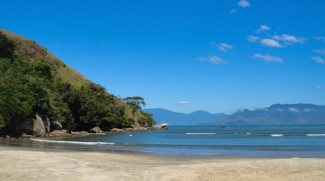 São Paulos norra kust