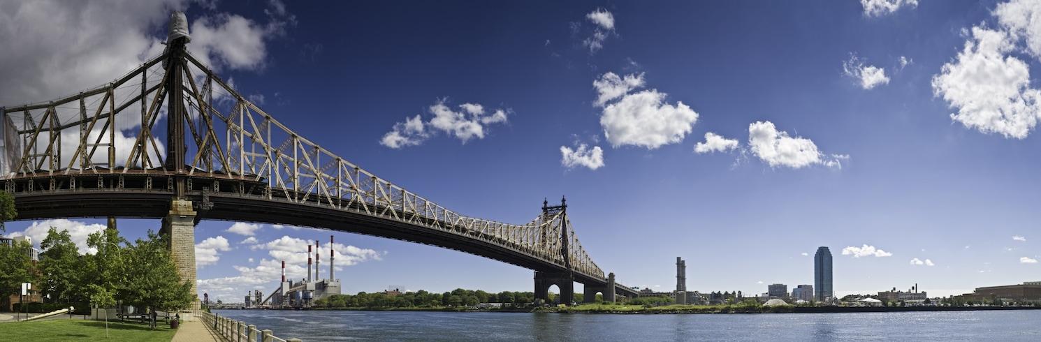 Джамейка, Нью-Йорк, США