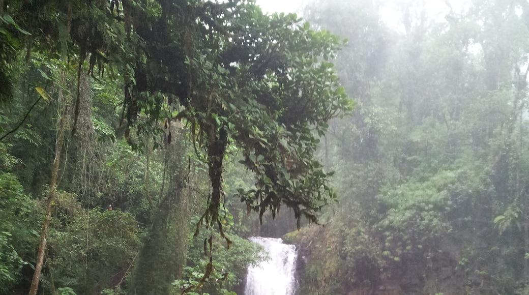 La-Paz-Wasserfälle