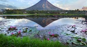 Mayon-vulkán