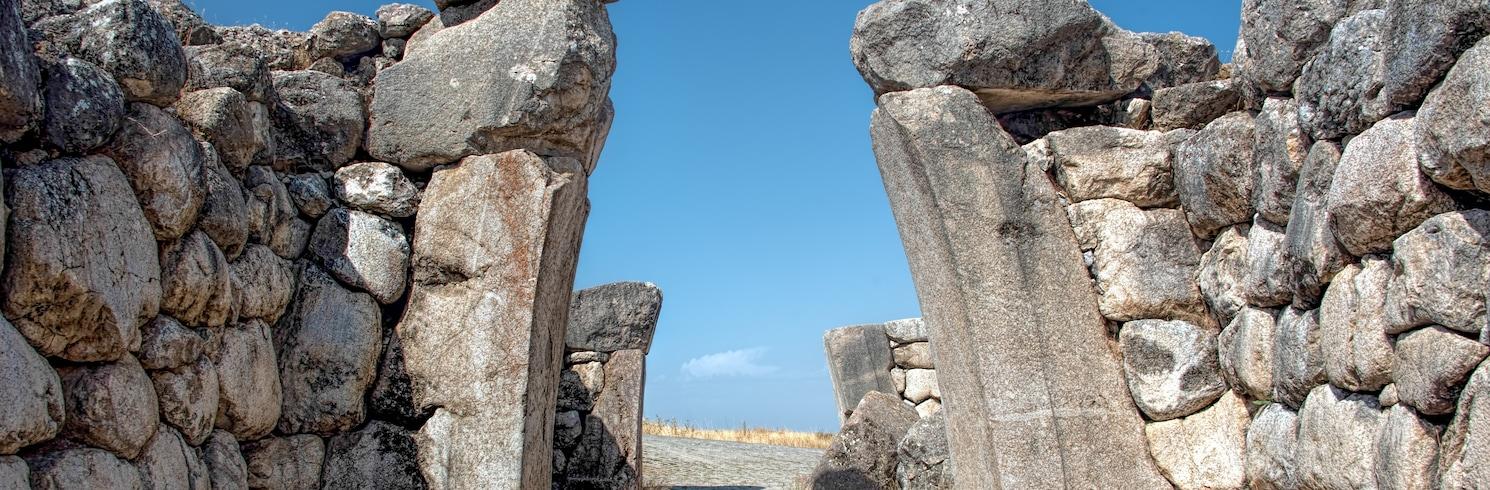 초룸(주), 터키