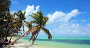 شاطئ بفارو