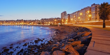 Pocitos, Montevideo, Uruguay