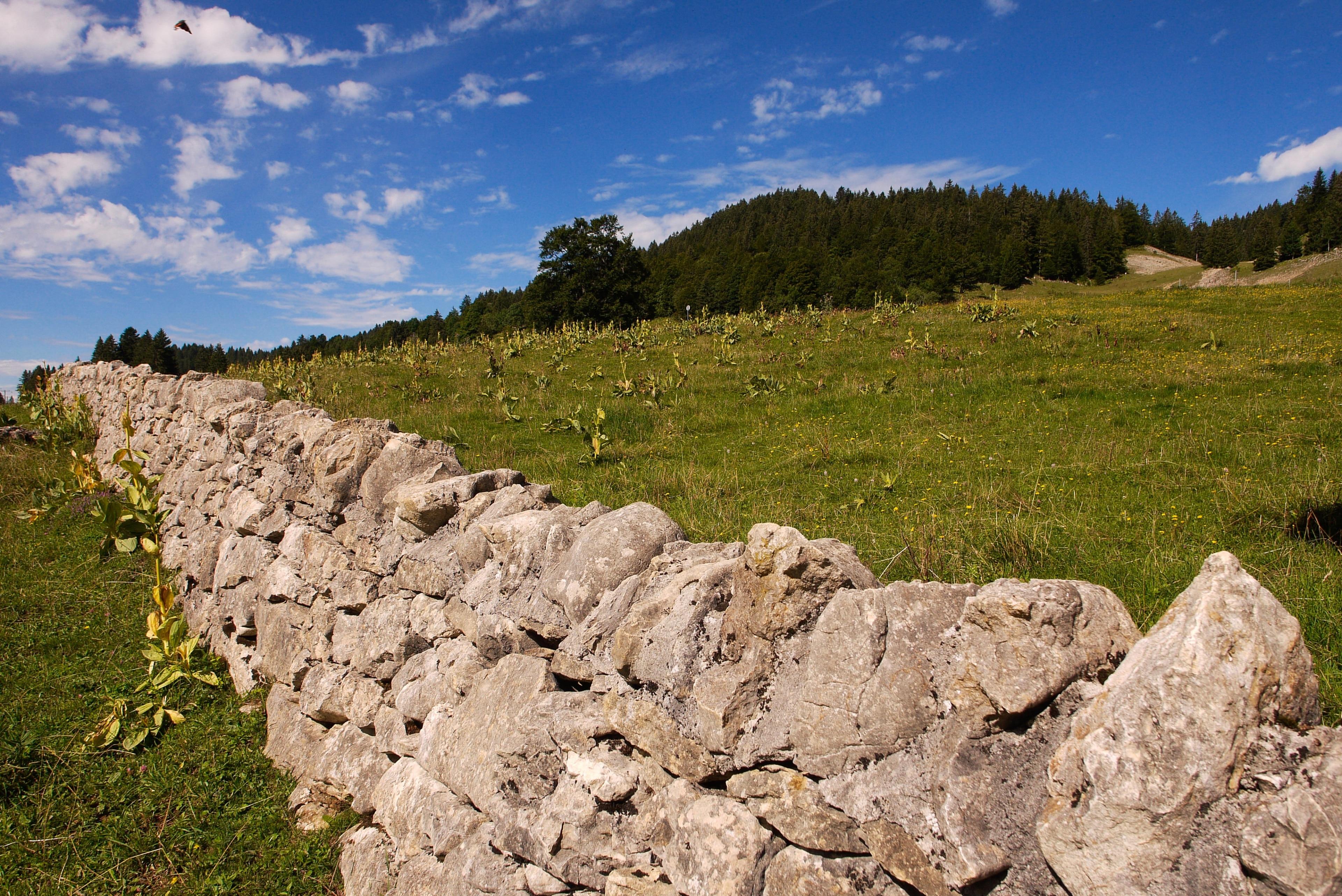 Parc naturel régional du Haut-Jura, Jura (departement), Frankrijk