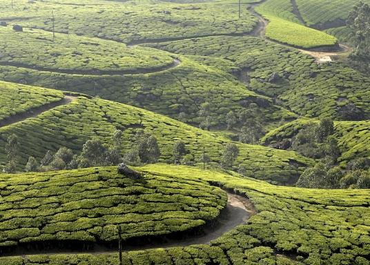 Idukkin piirikunta, Intia
