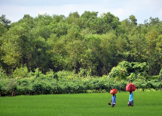 斯里蒙戈爾, 孟加拉
