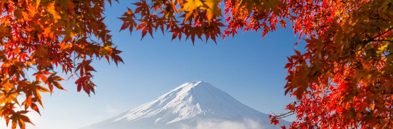 Kofu, ญี่ปุ่น