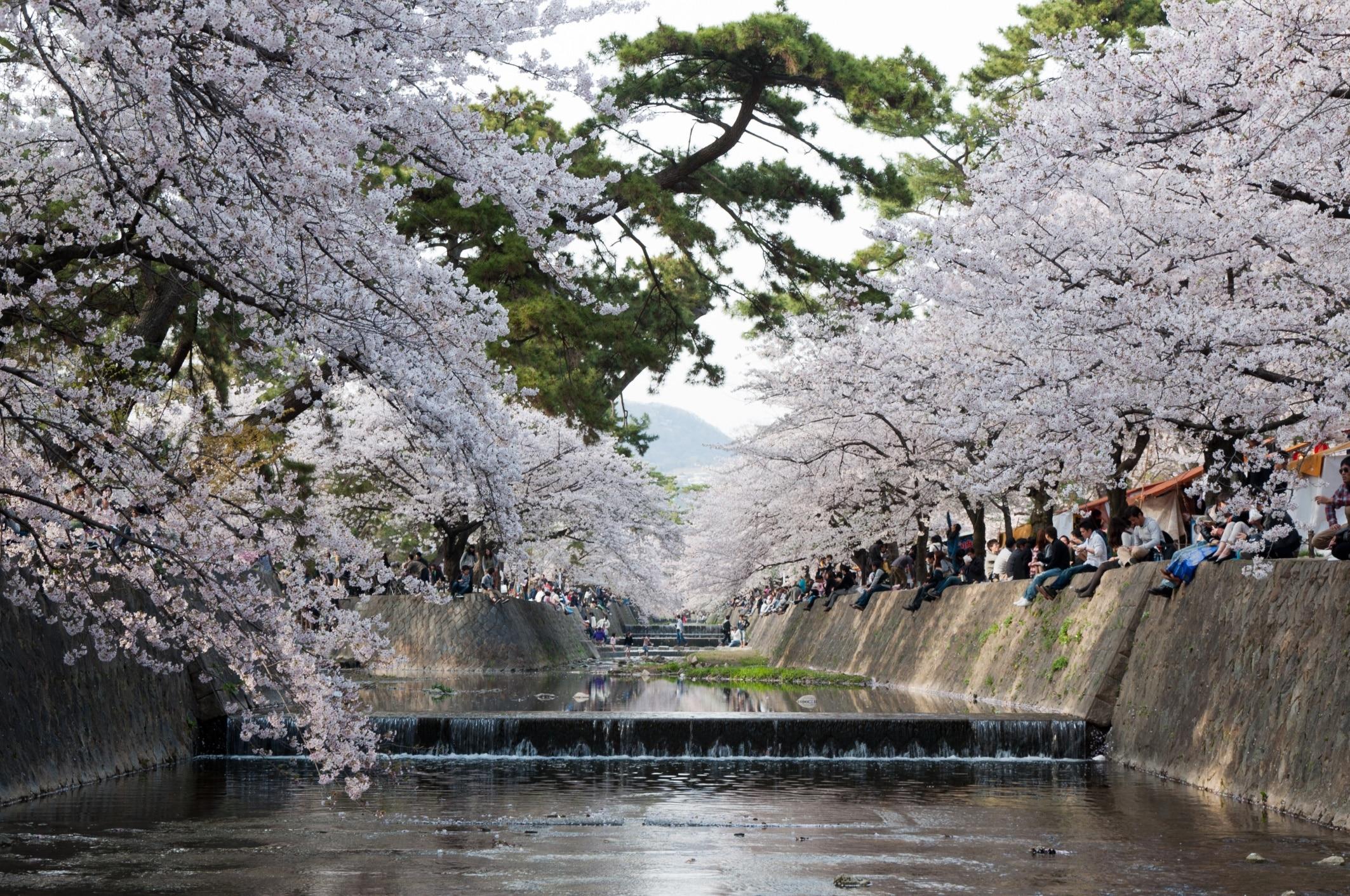 Shukugawa Kasenshiki Ryokuchi Park, Nishinomiya, Hyogo Prefecture, Japan