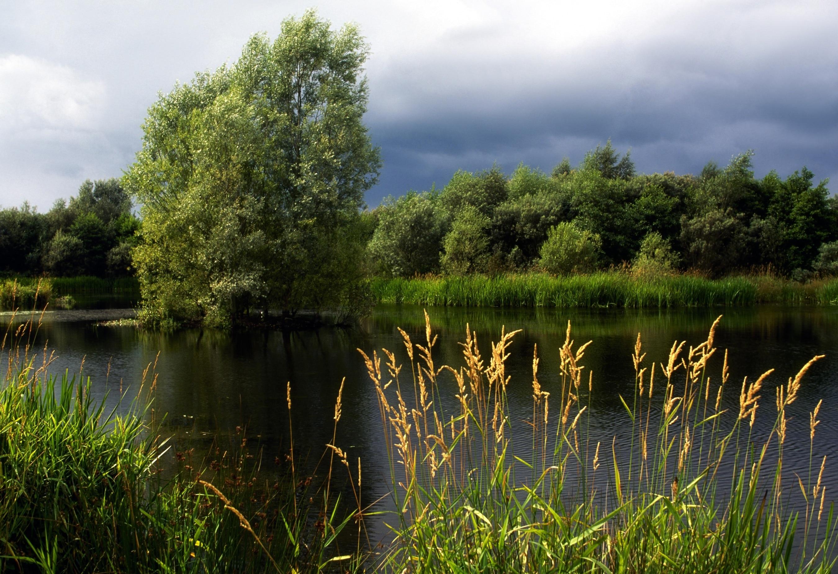 Dungannon, Noord-Ierland, Verenigd Koninkrijk
