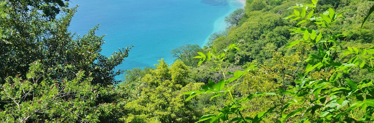 파파가요, 코스타리카