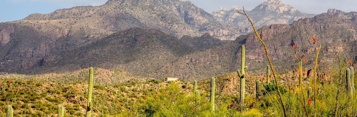 Mount Lemmon, Arizona, Yhdysvallat