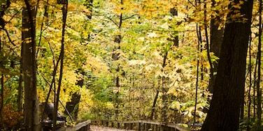 Westerville, Ohio, United States of America