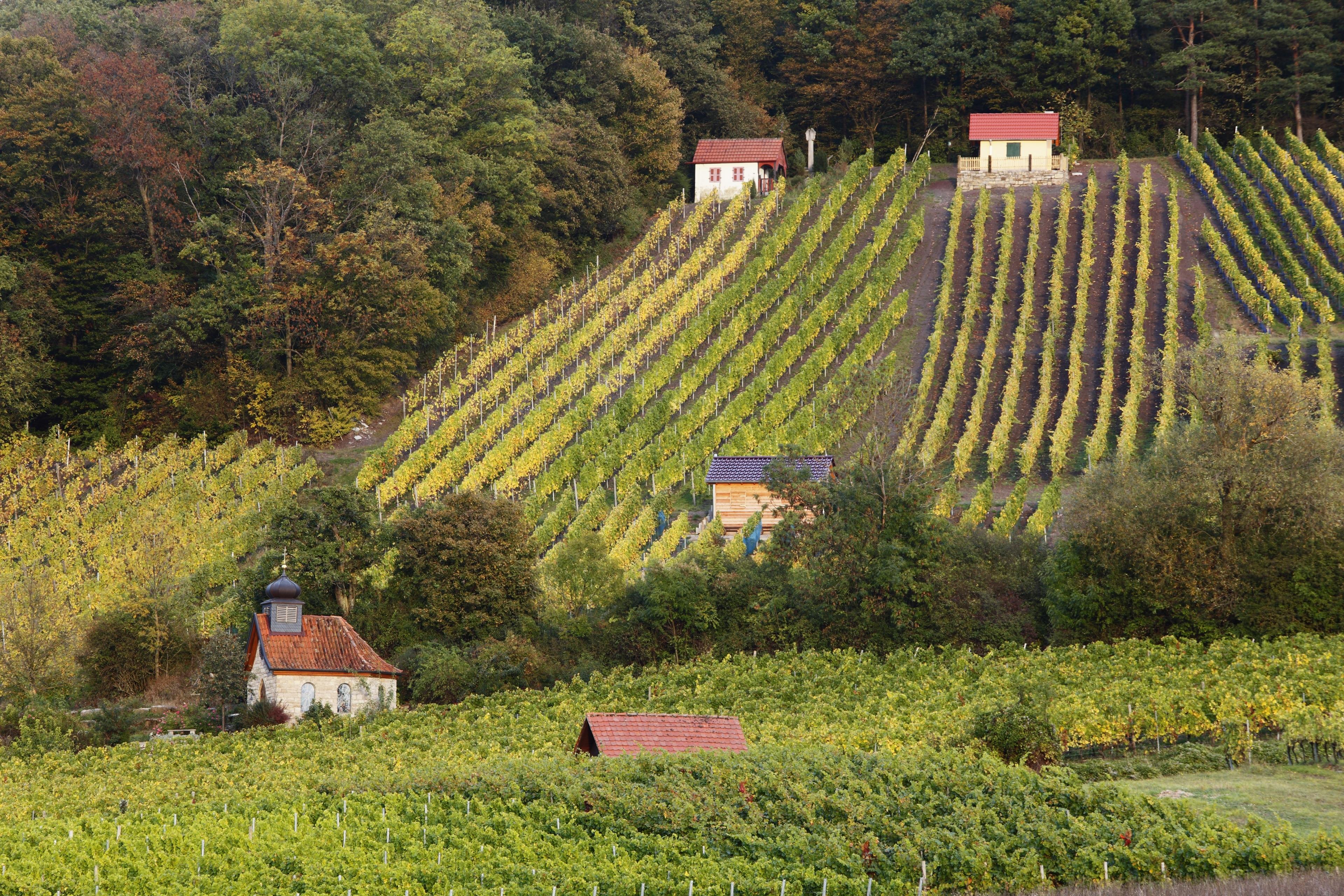 Westerwaldkreis, Rheinland-Pfalz, Deutschland