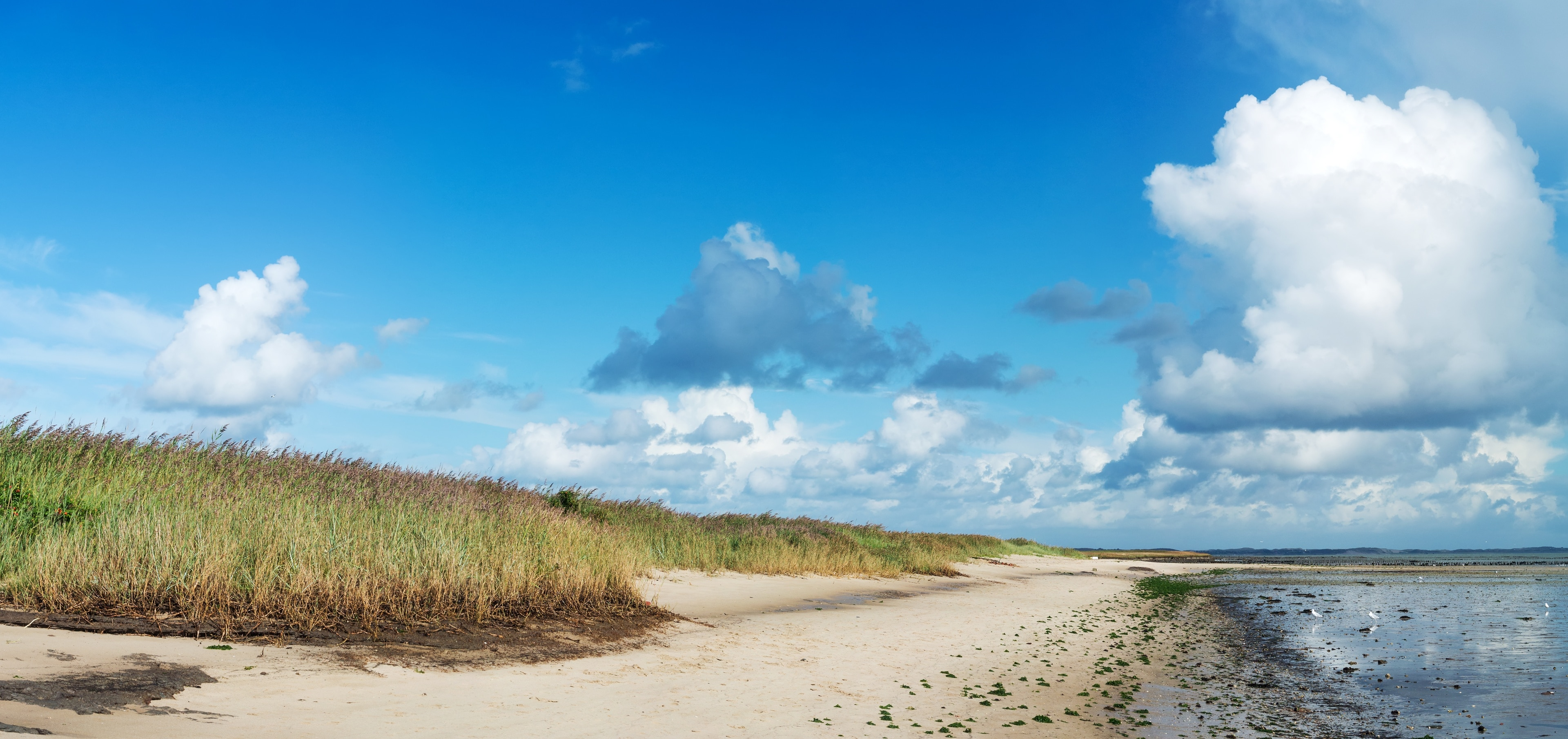 Arrondissement de Frise-du-Nord, Schleswig-Holstein, Allemagne