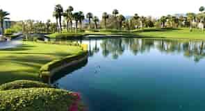 Palm Desert