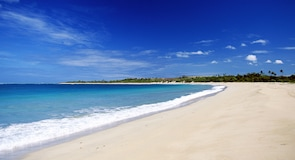 熱帶島嶼度假村