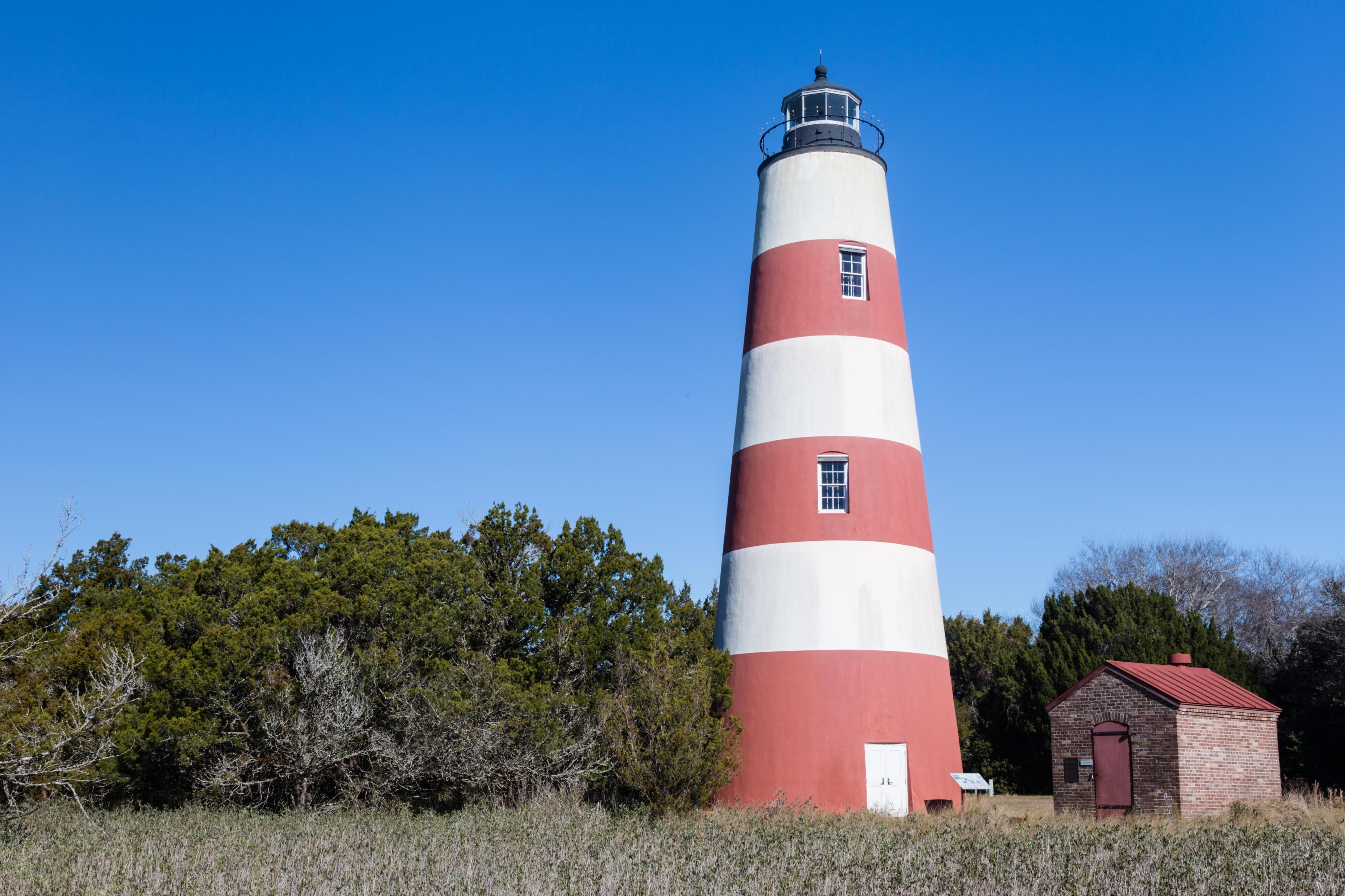 Sapelo Island, Georgia, USA