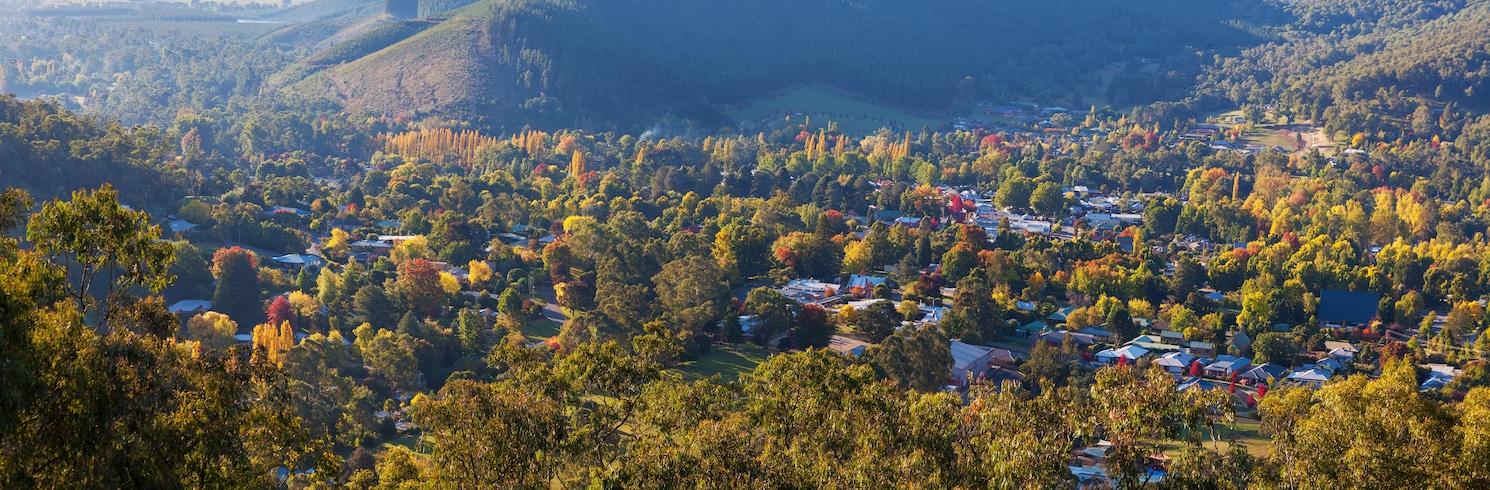 阿爾卑斯郡, 維多利亞, 澳洲