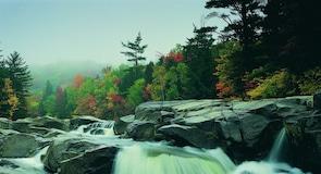 Swift River Reservation