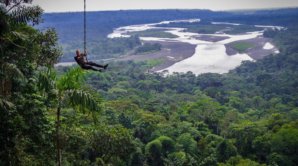 Forêt amazonienne de l'Équateur