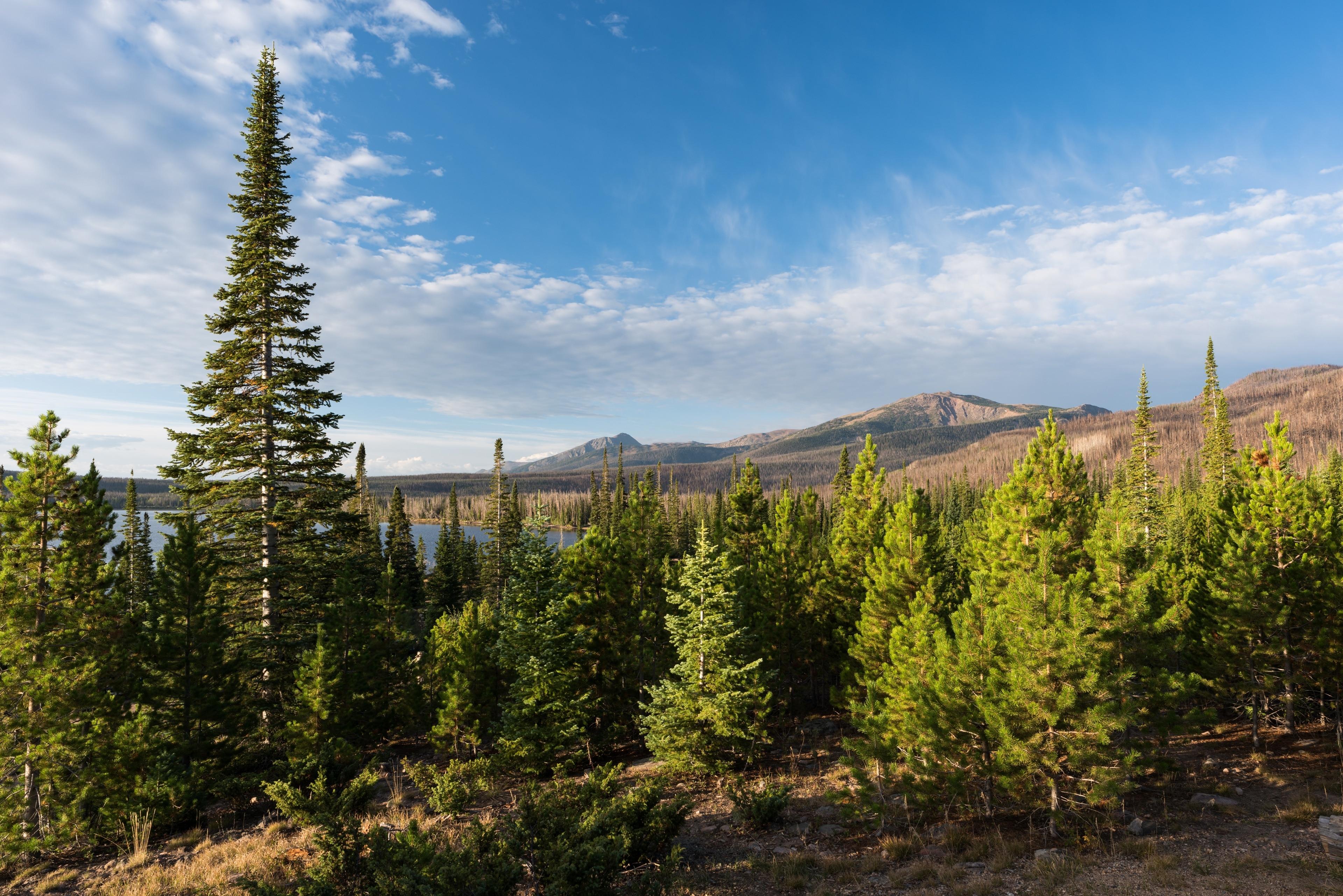 Jackson County, Colorado, United States of America