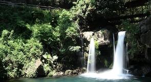 Barranca del Cupatitzio (национальный парк)