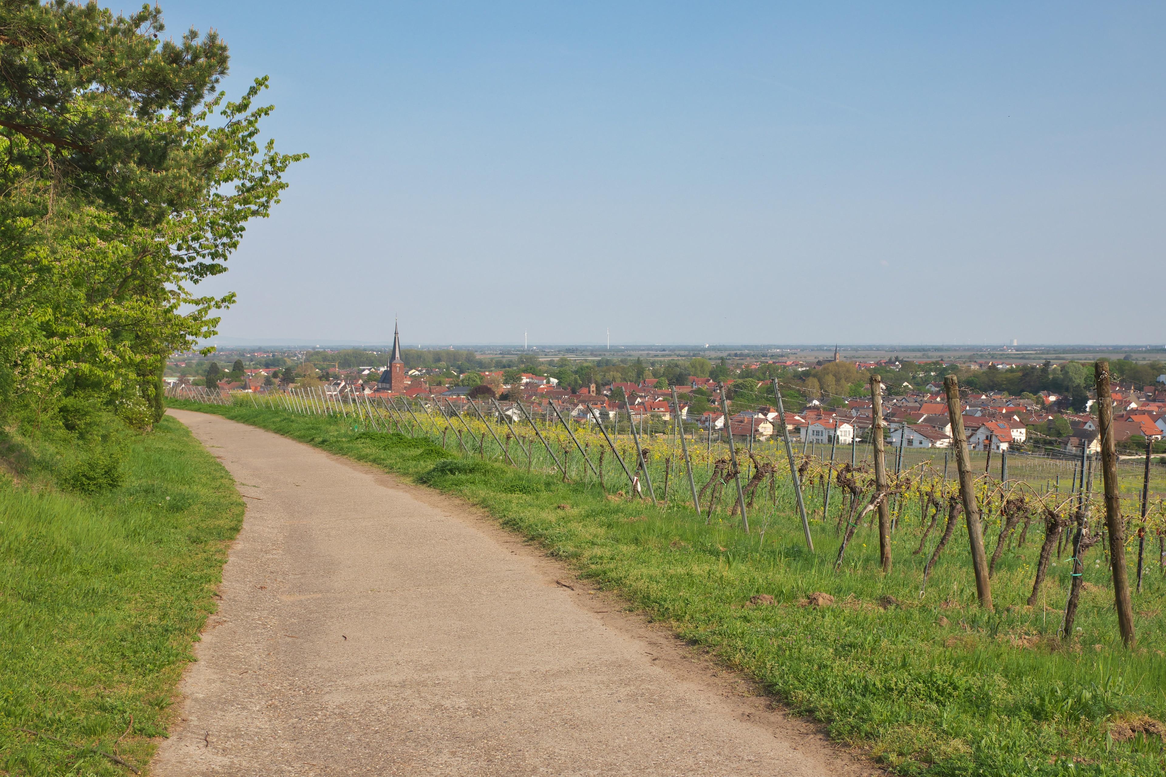 Naturpark Pfälzer Wald, Rheinland-Pfalz, Deutschland