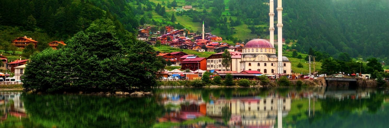 Çaykara, Türkiye