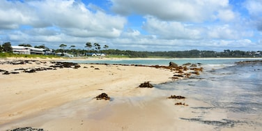 Mollymook Beach, Ulladulla, New South Wales, Australia